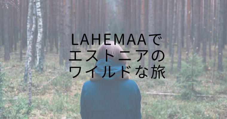 Lahemaaでエストニアのワイルドな旅