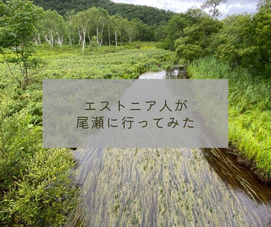 エストニア人が日本の湿原に行ってみた